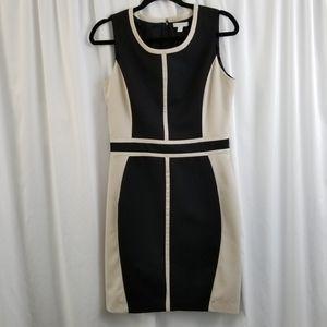 New York & Company Color Block Dress Black & Tan 8